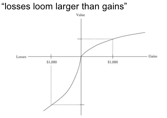 The figure displays the value that an individual subject to mental accounting attributes to losses vs. gains.